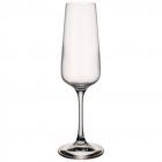 Ovid champagne glass 4-piece set